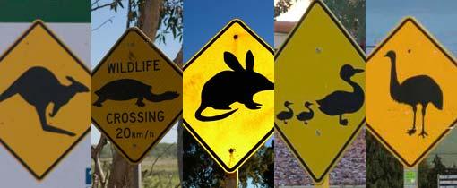 Typische Australische verkeersborden - zo kom je ze alleen in down under tegen!