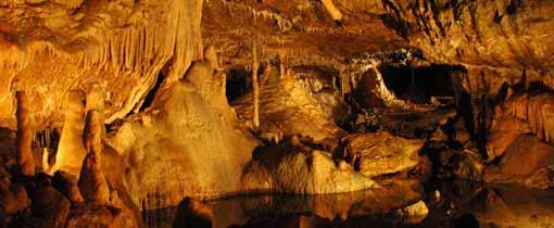 De grotten van Hotton brengen je via een spelonk 65 meter onder de grond