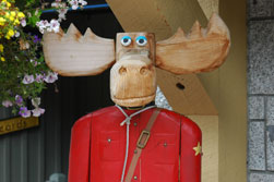 Canadese Mountie