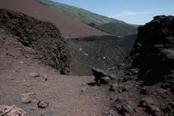 Etna krater Sicilie