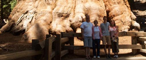 Sequoia & Kings Canyon. De grootste bomen ter wereld