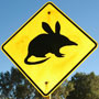 Australie kwis: leuke vragen over Down Under
