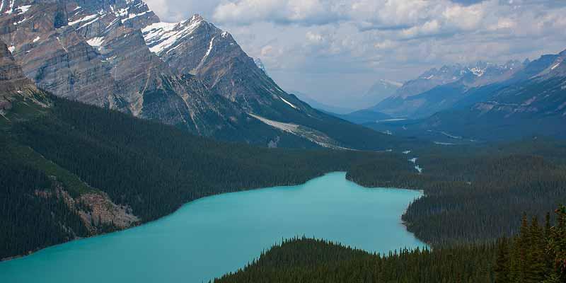 Peyto Lake. Beroemd vanwege haar mooie ligging en blauwe kleur