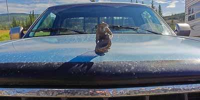 Yukon: Goudzoeken in de Klondike. De voortdurende Goldrush