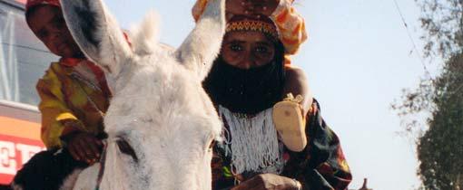 Bezienswaardigheden in de Sinaï. Ingeklemd tussen Golf van Akaba, Rode- en Middelandse Zee
