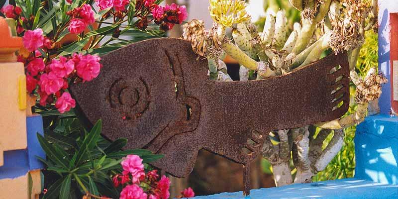 Een hek met bloemen, ergens op Fuerteventura