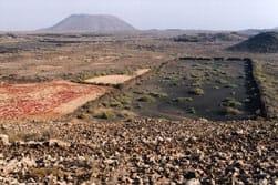Een schraal stukje landbouwgrond ergens in het binnenland van het Canarische Eiland Fuerteventura