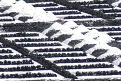 Winning van zee zout op La Palma
