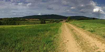 Zuid-Bohemen. Rijke historie en gevarieerd landschap. Boheemse woud