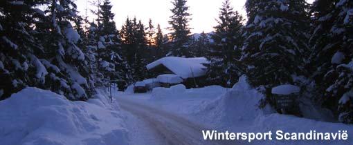 Wintersport Scandinavië: Noorwegen, Zweden en Finland. Skien in Noorwegen, Zweden en Finland